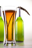 Still life with beer — Stock Photo