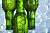 Green bottle of beer — Stock Photo