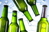 Cold beer bottle — Stock Photo