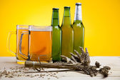 The still life with beer — Stock Photo