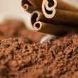 Cinnamon — Stock Photo #7418143