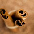 Cinnamon — Stock Photo #7420431