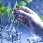 Chemical laboratory glassware equipment, ecology — Stock Photo #7423337