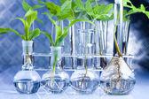 Eco laboratory — Stock Photo