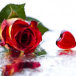 Rose and heart — Stock Photo