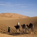 Moroccan desert dune, merzouga — Stock Photo #7435172