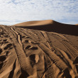 Moroccan desert dune, merzouga — Stock Photo
