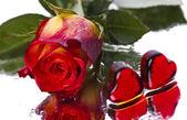 Valentýna — Stock fotografie