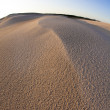 Desert dunes — Stock Photo