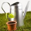 Watering CAnd Garden — Stock Photo #7456041