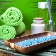 Spa and body care composition — Stock Photo #7460133