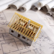 Architecture model and plans — Stock Photo #7763022