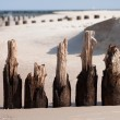 Wooden breakwaters — Stock Photo