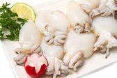 Fresh cuttlefish — Stock Photo