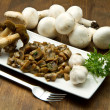 Mushrooms - Stock Photo