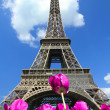 Tour eiffel — Stock Photo #7220468