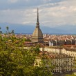 A view of Turin — Stock Photo #7266048