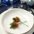 Christmas table — Stock Photo #7313178
