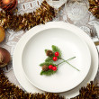 Christmas table — Stock Photo #7313268