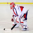 Ice hockey goalie — Foto de stock #7413449
