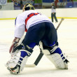 Ice hockey goalie — Foto de stock #7413465