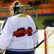 Stock fotografie: Ice hockey goalie