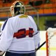 portero de hockey sobre hielo — Foto de Stock
