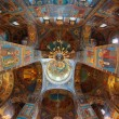 church of the savior on blood — Stock Photo #7812434
