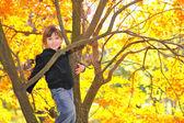 Little girl climbed on tree — Stock Photo