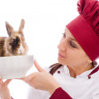 Chef with dwarf rabbit inside a bowl — Stock Photo