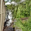 Steam train — Stock Photo #6950601