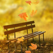 Empty wooden bench in the city park — Stock Photo