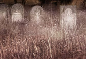 老犹太公墓 — 图库照片