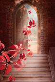 Autumn leaves fall through the open door — Stock Photo