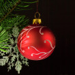 Hand painted bauble — Stock Photo #7444466