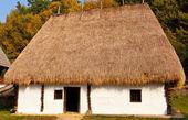 Old Romanian house — Stock Photo