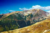 Landscape with Mohoru peak of Parang mountains in Romania — Stock Photo
