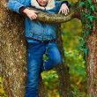 Kid climbing in a tree - Stock Photo