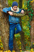 Kid climbing in a tree — Stock Photo
