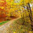 Colorful autumnal landscape - Stock Photo