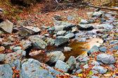 Creek flowing among rocks — Stock Photo