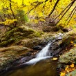 Autumnal landscape - Stock Photo