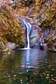 Waterfall in the mountains — Stock Photo