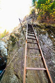 Rusty and unstable ladder on mountain — Stock Photo