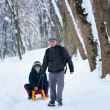 Father and son with a sledge — Stock Photo #7596047