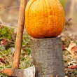 Royalty-Free Stock Photo: Pumpkin outdoor