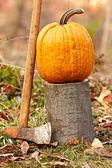 Pumpkin outdoor — Stock Photo