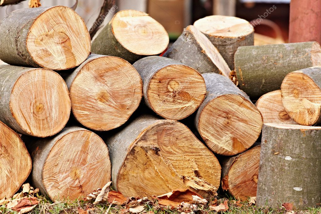 A pile of freshly cut logs outdoor — Stock Photo #7721247