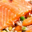 Salmon fillets with garnish — Stock Photo #7731125
