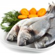 Stock Photo: Gilt head bream